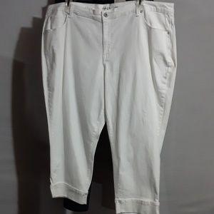 Style & Co Capris size 24W